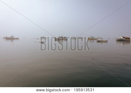 Boats are moored in the harbor on a foggy morning