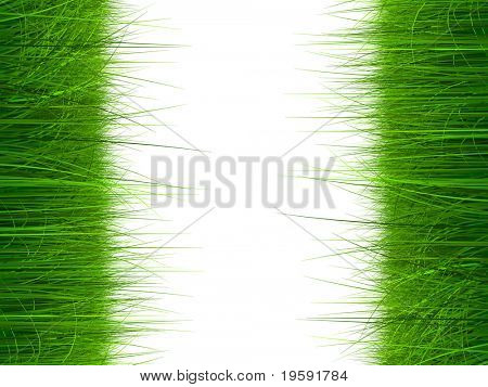 High resolution grass frame isolated on white background