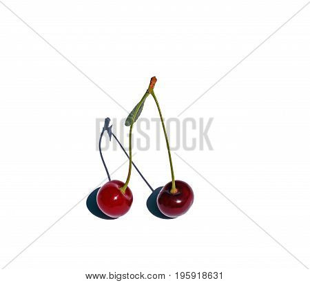 Bright red cherries on a white background