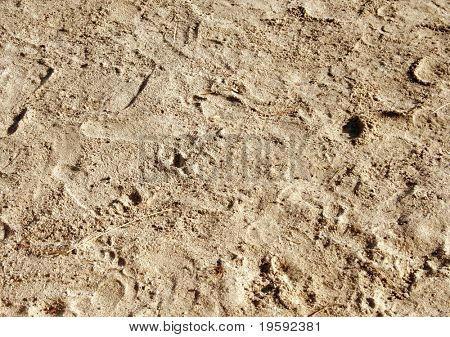 Sandy beach sand with human footprints
