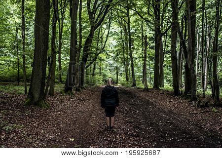 Beautiful woman hiker standing on forest trail and looking away. Female on hike in nature spooky mystical forests