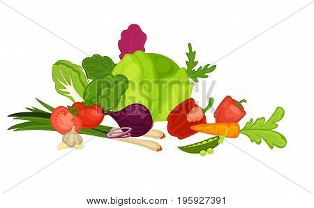Huge cabbage, Chinese cabbage head, sweet pepper, crispy carrot, ripe peas, juicy tomatoes, salad onion, green leek, spicy garlic and fresh arugula stems in big heap isolated vector illustration.