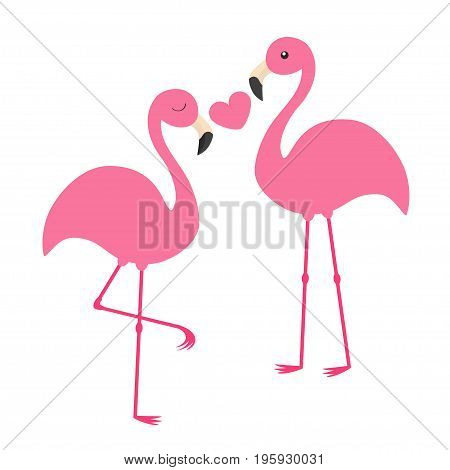 Pink flamingo couple holding heart. Love family. Exotic tropical bird. Zoo animal kids collection. Cute cartoon character. Greeting card. Flat design. White background Isolated Vector illustration