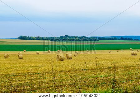 Countryside And Haystacks In Burgundy