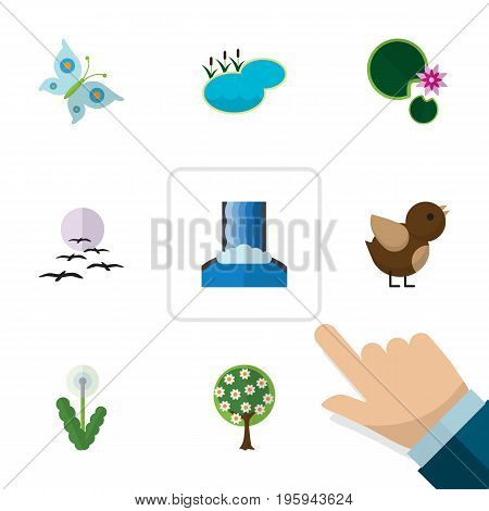 Flat Icon Natural Set Of Gull, Monarch, Bird And Other Vector Objects