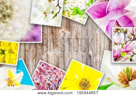 square images of flowers forming collage on wooden background