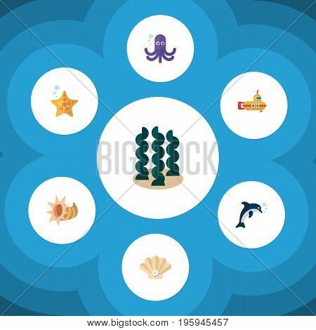 Flat Icon Nature Set Of Alga, Periscope, Conch And Other Vector Objects