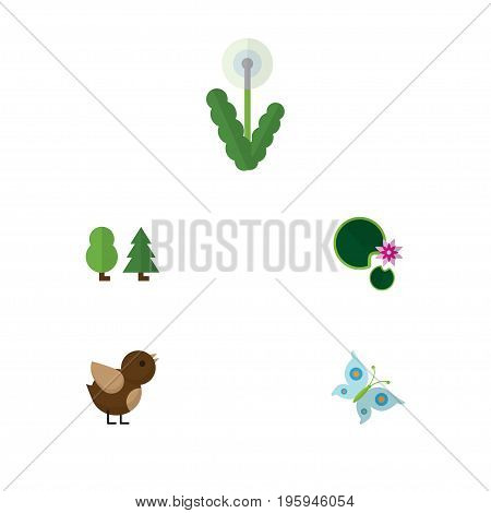 Flat Icon Ecology Set Of Floral, Bird, Lotus And Other Vector Objects