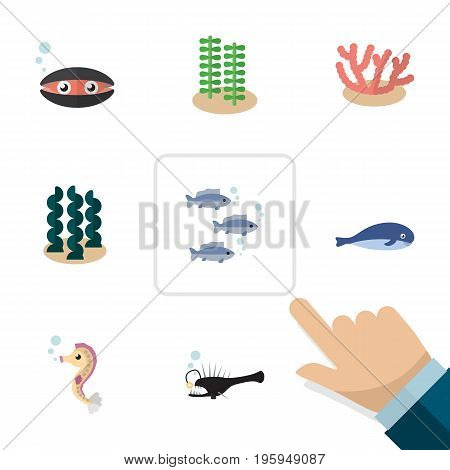 Flat Icon Nature Set Of Seaweed, Alga, Tuna And Other Vector Objects