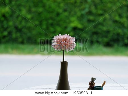 Flower,Pink Gerber in the vase with green leave background, soft
