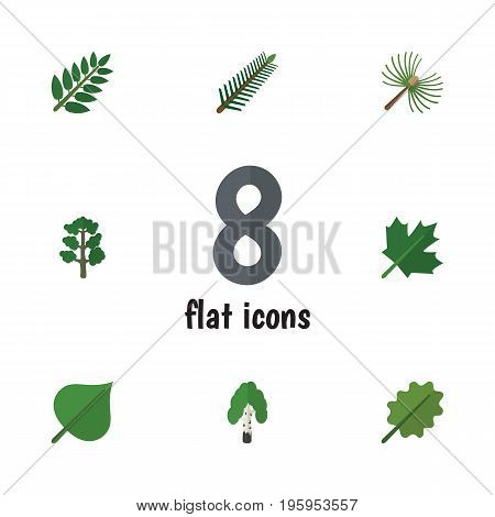 Flat Icon Bio Set Of Alder, Oaken, Forest And Other Vector Objects