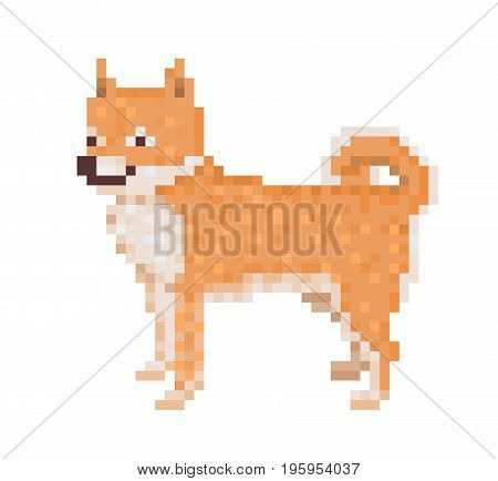 Old school 8 bit pixel art standing red Shiba Inu dog icon isolated on white background. Japanese dog breed character. Cute pet puppy symbol. Retro video/pc game domestic animal.Friendly smiling spitz