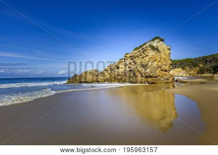 Beautiful rock formation reminding a lion reflecting in water on sandy ocean beach with copy space