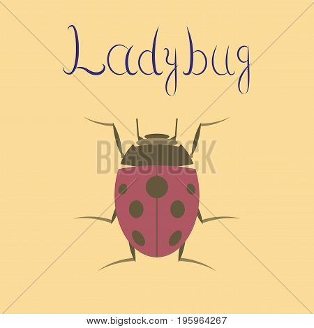 flat illustration on stylish background insect ladybug