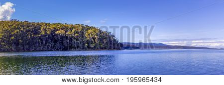Landscape panorama of Wallagaraugh River and native Australian vegetation with copy space