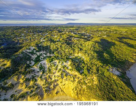 Aerial view of Rye ocean beach coastline with houses scattered in lush vegetation at sunset. Melbourne Australia