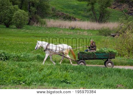 Kirovograd region Ukraine - May 12 2017: Horse cart carrying hay harvest on rural road