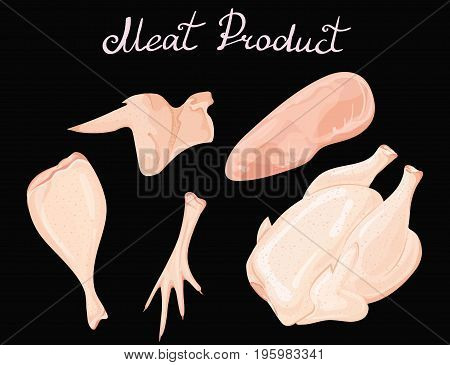 Set of chicken meat. Vector collection of meat products from poultry. Carcase of the cock. The whole leg. Fillet of turkey.