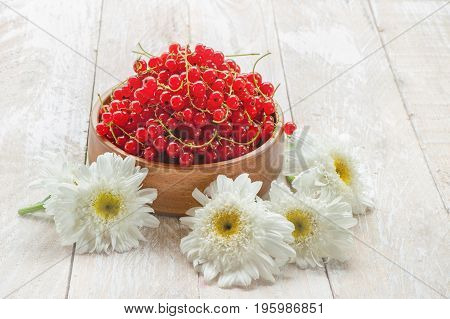 Wooden bowl with ripe red currant berries on a light background with flowers of chamomile . A horizontal frame. copy space