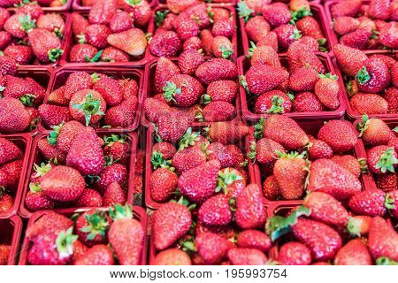 Many Strawberries On Display In Market In Red Baskets