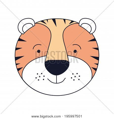 color sections face male tiger animal happiness expression vector illustration