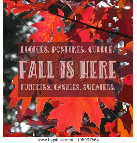 A beautyful fall quote background vector. EPS 8. Perfect for your blogpost or social media.