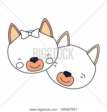 color sections faces of cat couple animal happiness expression vector illustration