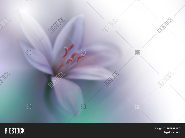 Beautiful Green Nature Image Photo Free Trial Bigstock