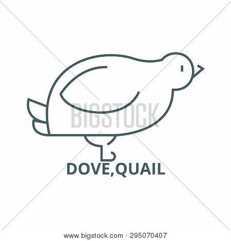 Dove, Quail Line Icon Vector & Photo (Free Trial) | Bigstock