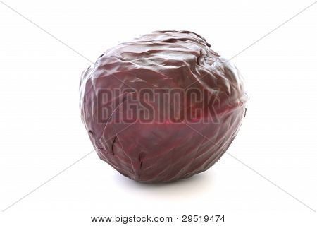 Whole raw red cabbage