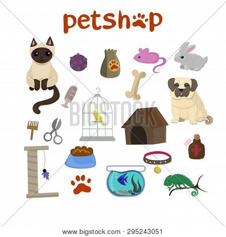 Pet Shop Decorative Icons Set With Canary, Fish, Chameleon, Rabbit, Dog And Cat Icons And Goods For