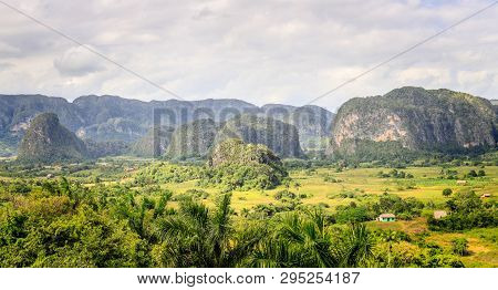 Green Caribbean Valley With Small Cuban Houses And Mogotes Hills Landscape Panorama, Vinales, Pinar