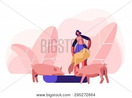 Young Woman Feeding Pigs Putting Grain In Trough. Female Farmer Character At Work Process Caring Of
