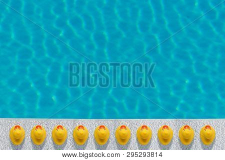 Yellow Rubber Ducks Near To The Pool. Summer Minimal Concept.