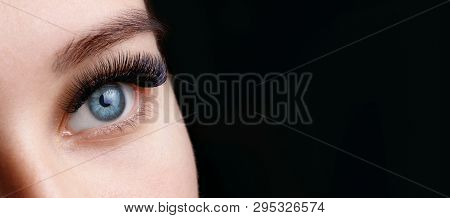 poster of Close up view of beautiful blue female eye with long eyelashes and perfect trendy eyebrows on dark background. Eyelash extension procedure.