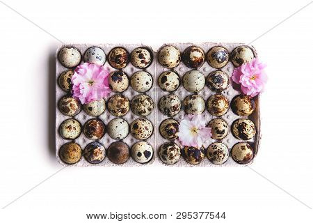 Isolated Quail Eggs And Pink Cherry Blossom Composition In Paper Box Flat Lay Style. Easter Concept.