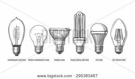 Black And White Lightbulbs Sketch. Light Bulbs Evolution Retro Sketch Vector Illustration, Vintage H