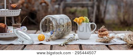 Served Festive Decorative Table In The Garden Outdoors. Farm. Rustic Style. Willow Spring Bloom. Flo