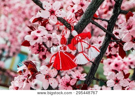 Bulgarian Traditional Spring Decor Martenitsa On The Cherry Blossom Tree Background. Baba Marta Holi