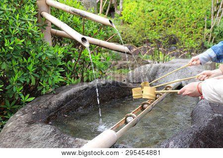 Temizuya - water basin for ritual ablution in Kamakura Hasedera temple, Kamakura, Japan. Cleansing ceremony by using water in bamboo scoop