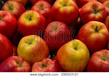 Apple Scatter Gloucester Variety. Background Of Red Apples. Gloucester Apples. Red Apples. Fruit Bac