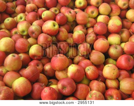 Apples Jonagold