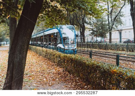 Blue City Trams In The Autumn City.