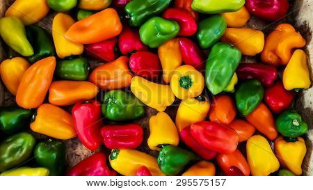 Close Up Of Beautiful Yellow, Red And Green Bell Pepper Or Pepper Paprika Or Sweet Peppe
