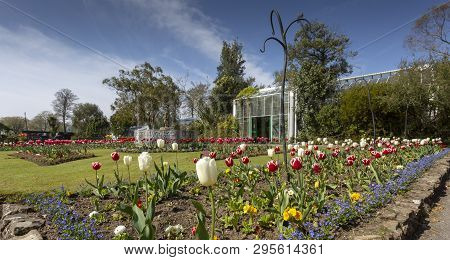 Editorial Swansea, Uk - April 13, 2019: The Botanical Gardens Set Within The Tranquil Surroundings O