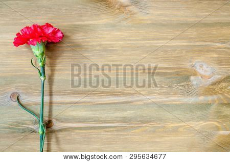 9 May background with red carnation on the wooden background, free space for 9 may text, 9 may background, 9 may card