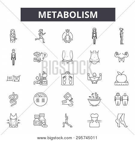 Metabolism Line Icons, Signs Set, Vector. Metabolism Outline Concept, Illustration: Metabolism, Fitn