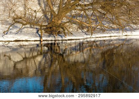 Beautiful Reflection Of Trees And Snow In The Mirror Smooth Surface Of The River.