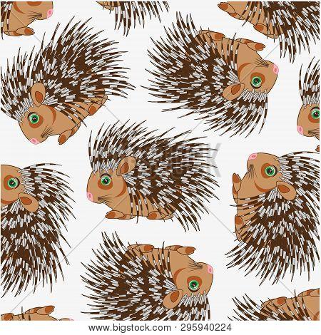 Wildlife Porcupine Decorative Pattern On White Background