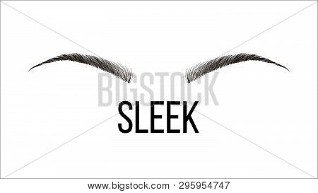Sleek, Rounded Vector Hand Drawn Brows Shape. Female Brows Style With Title Isolated Clipart. Microb